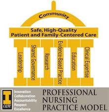 Professionalism In Nursing Professional Nursing Practice Model University Of Iowa Hospitals