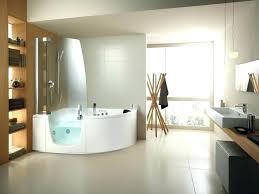 handicap bathtub rails handicap bathtub rails large size of bathroom bathtub rails shower grab bar installation
