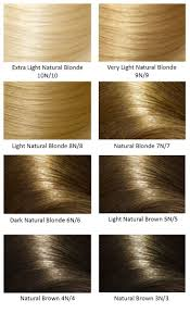 Argan Oil Color Chart Heres What People Are Saying About Argan Oil Hair Color