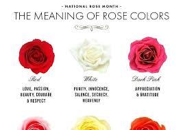 Rose Color Meaning Chart Www Bedowntowndaytona Com