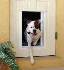 2021 s best smart pet doors and why