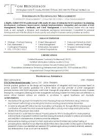 Credit Risk Manager Resume Sample Free Resume Template Download ...