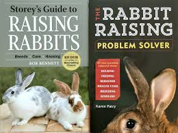 karen s rabbit raising problem solver and bob bennett s y s guide to raising rabbits 4th edition both published by y publications
