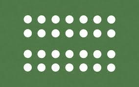 garden mat. garden mat #6, a weed barrier good for medium plants such as beets,