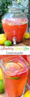 Best 20 Lime drinks ideas on Pinterest