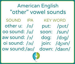 You can also practice your pronunciation by using the recording function! Introduction To The Five Other Vowels 1 Other U ʊ 2 Oo Sound U 3 Aw Sound ɔ 4 Oi Sound ɔɪ 5 Ow Soun Short Vowels Short Vowel Sounds Vowel Sounds