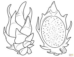 Small Picture Dragon Fruit and its cross section coloring page Free Printable