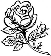 Small Picture Rose flower coloring page pictures Coloring