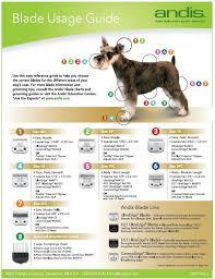Blade Usage Guide Banho E Tosa Dog Grooming Pet