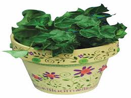 painting flower pots ideas with green plant