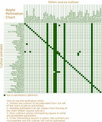 Apple Pollination Synchronization Chart 40 Download
