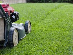 to lawn care landscaping