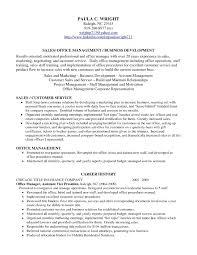 ... Profile Resume Example Professional Profile Resume Examples Resume  Professional Profile ...