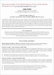 Luxury Business Analyst Sample Resume Finance Unique Junior