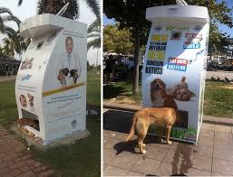 Solar Powered Vending Machine Enchanting These Vending Machines For Stray Animals Should Be In Every City