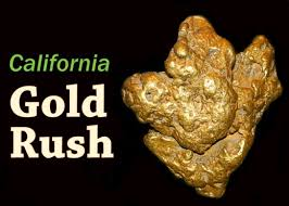 Image result for California Gold Rush GOLD