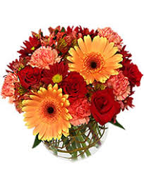 pictures of the flower. Simple The Hot U0026 Spicy Vase Of Flowers On Pictures Of The Flower U
