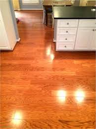 Best hardwood floors for dogs Kitchen Best Wood Flooring For Dogs Lovely Of Best Wood Floor With Dogs Unique How To Sand Houzz Best Best Wood Flooring For Dogs Tips Best Flooring Ideas