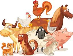 farm animals together. Brilliant Animals Stock Vector Of U0027Farm Animals Posing Together Funny Cartoon Character  Vector Illustration For Farm Animals Together A