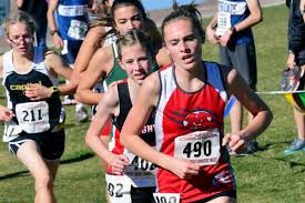 Madison cross country brings home state trophies | Sports |  rexburgstandardjournal.com