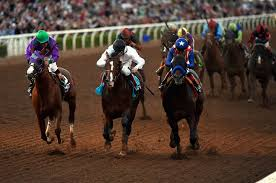 2014 Breeders Cup Charts Santa Anita Park Averages 50 Horse Deaths A Year This Year