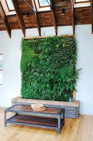 attractive living wall diy vertical garden how to make vertical garden indoor living wall alices garden