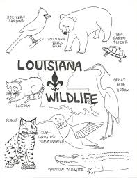 Small Picture Louisiana Wildlife Coloring Page Beat Up Road Sign