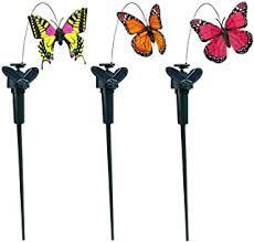 solar butterfly - Amazon.com