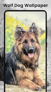 Cute Puppy Dog Live Wallpaper ...