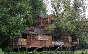 Top The Best Tree House Nice Design 6366Coolest Tree Houses