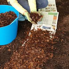 everyone asks how much mulch to apply and when to apply it there are no right answers it depends on several factors including your soil