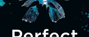 Perfect Remains by Helen Field - Book review - The Skinny