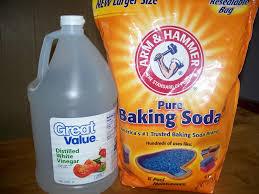 dec 9 2010 baking soda and vinegar