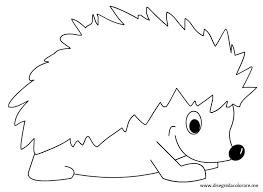 Hedgehog Coloring Page Hedgehogs Pinterest Hedgehog Coloring