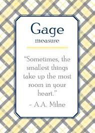 gage name meaning. gage \ name meaning t