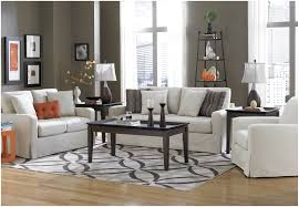 Modern Living Room Rugs Living Room Zebra Rug Modern Area Rugs For Living Amazing