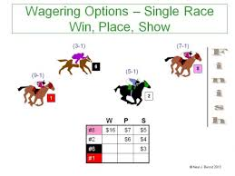 Kentucky Derby Race Chart Win Place Show How To Bet On Horses Getting Out Of The