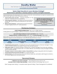 senior executive resume executive resume samples top resume samples professional resume