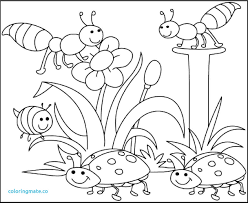 Downloadable Coloring Pages Beautiful Coloring Pages Free