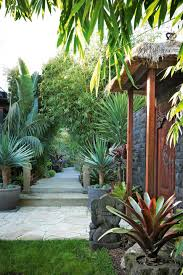 Modern Tropical Garden Design Made Wijaya A Bali Inspired Garden Makeover Styling By Phoebe Mcevoy