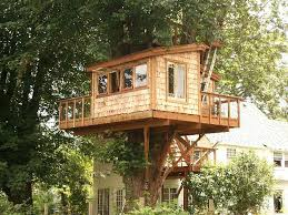 tree house plans designs adult tree house plans photo 1 tree house designs  and plans for