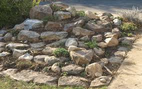 Marvelous How To Make Rock Garden 68 In Home Design With How To Make Rock  Garden