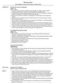 Manager Leadership Resume Samples Velvet Jobs