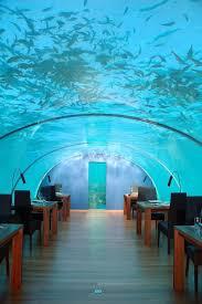 نتیجه تصویری برای رستوران زیر آب