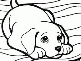 Small Picture Download Cute Dogs Coloring Pages Coloring Page For Kids