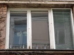 Kostenlose Bild Flasche Glas Alt Architektur Fenster Erstellen