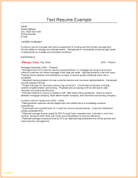 Plain Text Resume Example Best Of Plain Text Resume Sample Plain Text Resume Sample Luxury 2