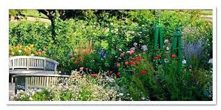garden nurseries near me. Nursery Garden Plant Home Guides Cut Flower Plants Near Me . Nurseries N