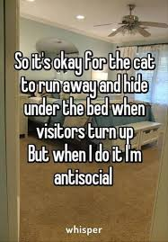 Afternoon Funny Quotes