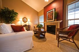 accent walls add drama and warmth